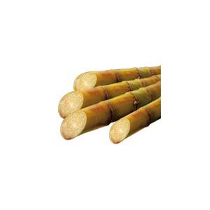 SUCRE DE CANNE ROUX BIO VRAC SAC 25 kg